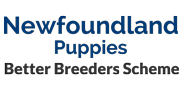 Better Breeders Scheme logo